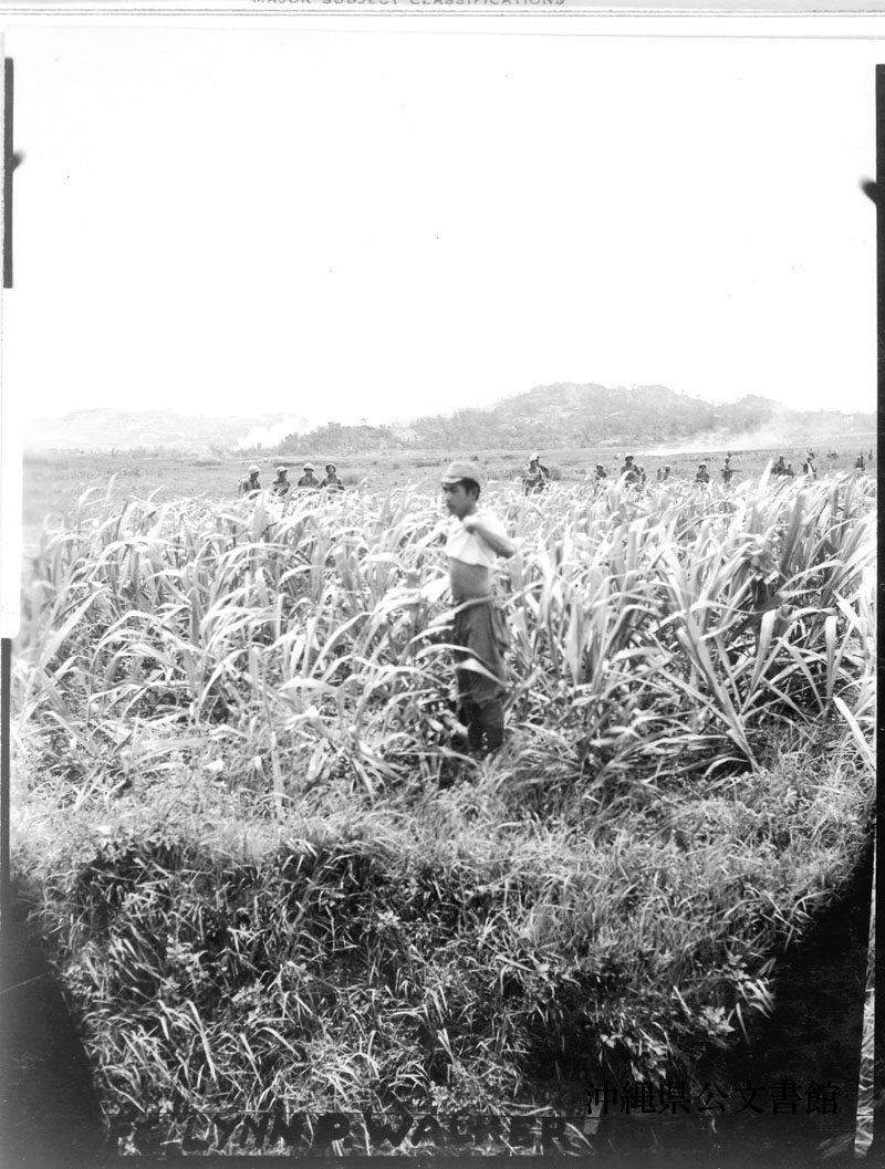 http://www.archives.pref.okinawa.jp/USA/12-53-2.jpg