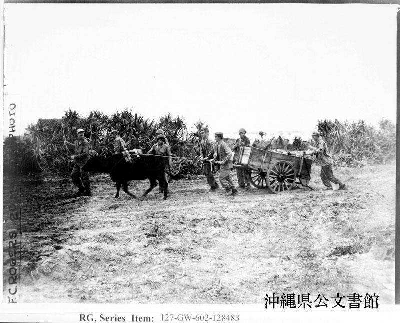 http://www.archives.pref.okinawa.jp/USA/128483.jpg