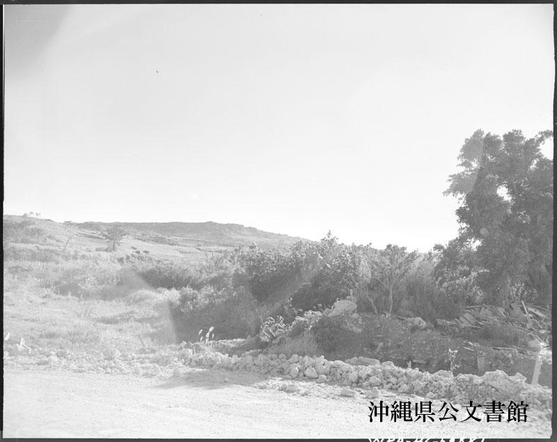 http://www.archives.pref.okinawa.jp/USA/249919.jpg