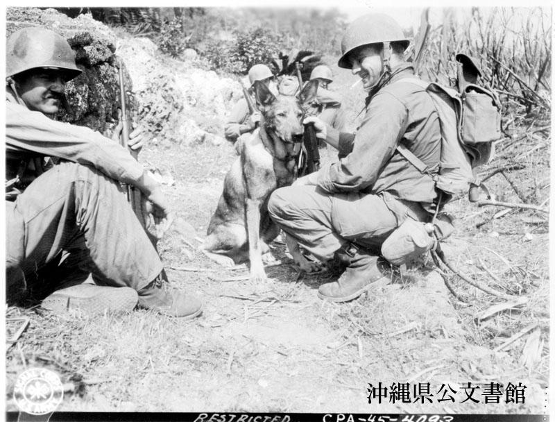 http://www.archives.pref.okinawa.jp/USA/329081.jpg