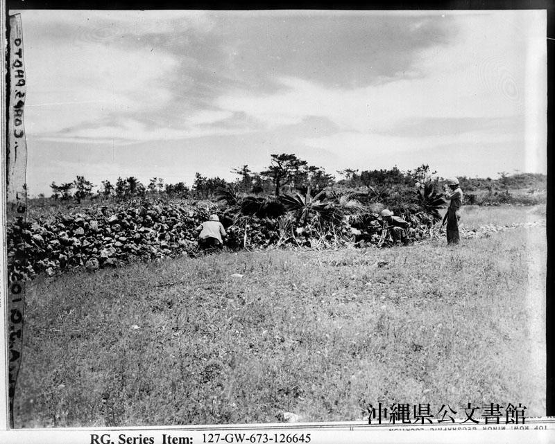 http://www.archives.pref.okinawa.jp/USA/88-31-3.jpg